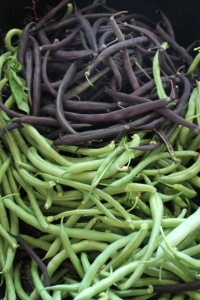 Purple and Green Beans,  by, Jean Smith